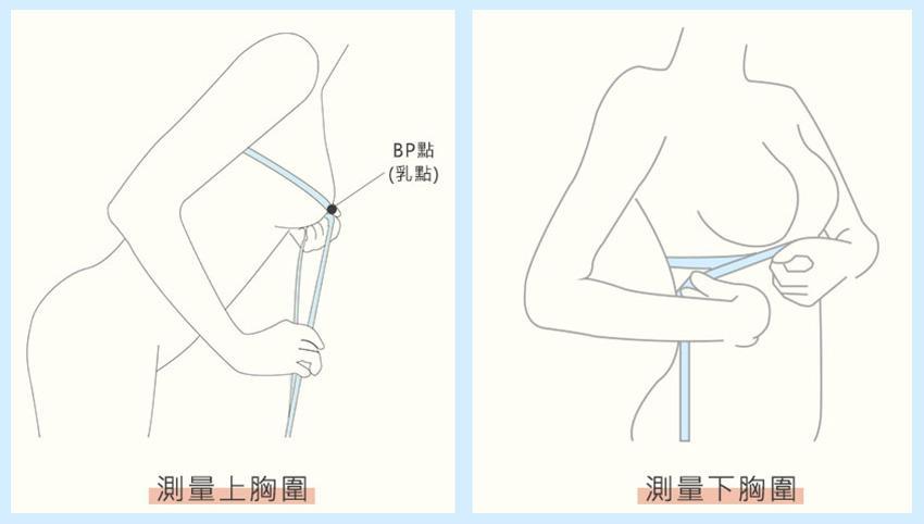 胸圍測量,正確量出內衣尺寸